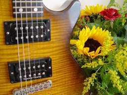 gitaar en bloem